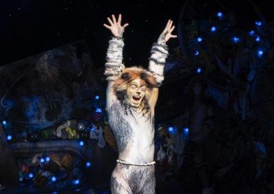 Cian Hughes Cats Performance